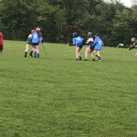 CAMOGIE-2