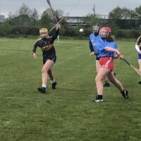 CAMOGIE-3